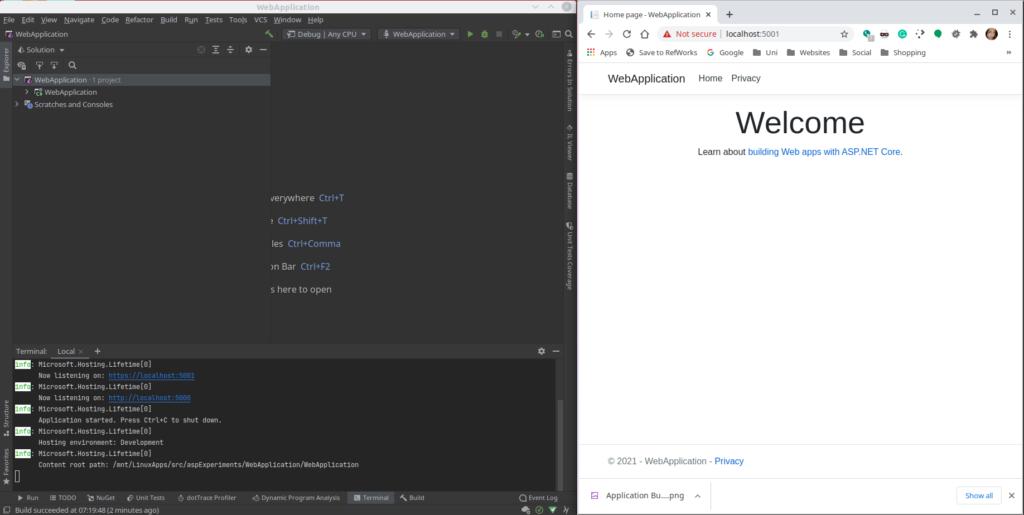 Build a default web application using the CLI